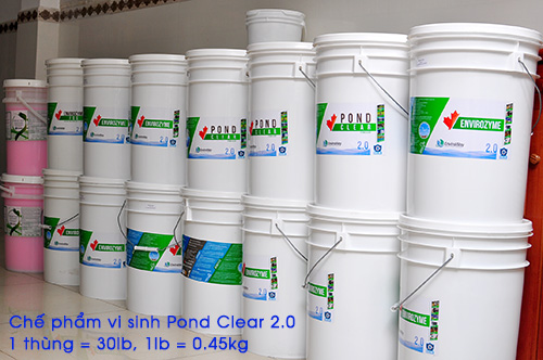 vi-sinh-khu-nito-pond-clear-3