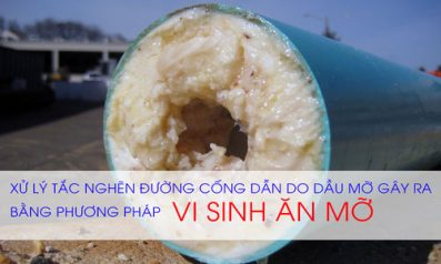 Giá Vi Sinh Ăn Dầu Mỡ Grease Trap Treament