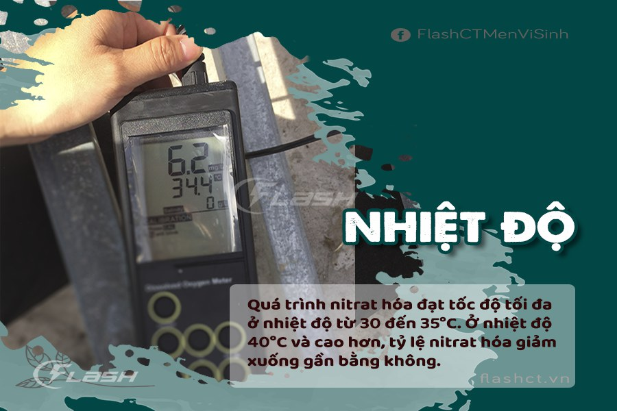 yếu tố ảnh hưởng quá trình nitrat hóa