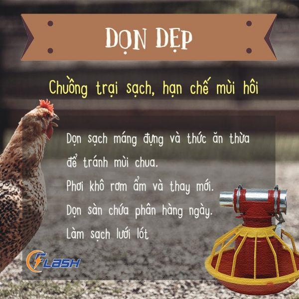 xử lý mùi hôi chuồng gà