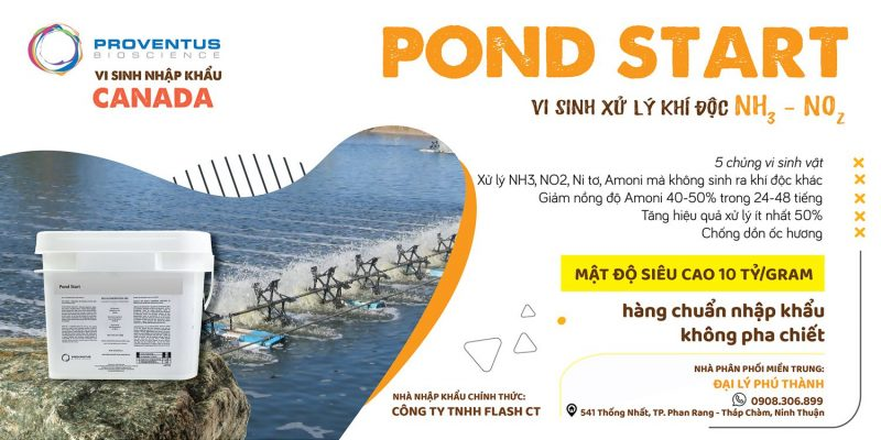 Men-vi-sinh-pond-start