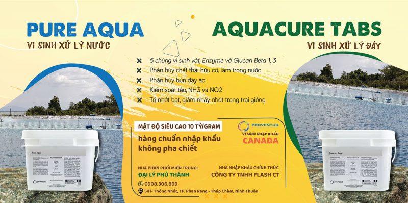 men-Vi-sinh-pure-aqua-aquacure-tabs