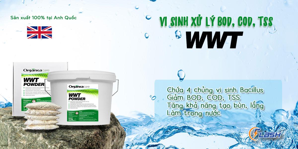 vi sinh xử lý nước thải WWT