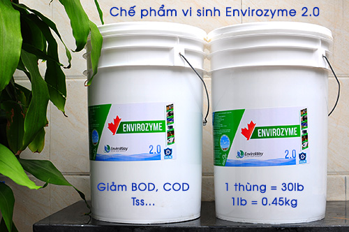 che-pham-vi-sinh-xu-ly-nuoc-thai-envirozyme-5
