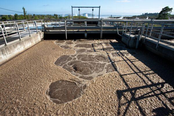 hàm lượng amoni trong nước thải cao hơn tổng nito