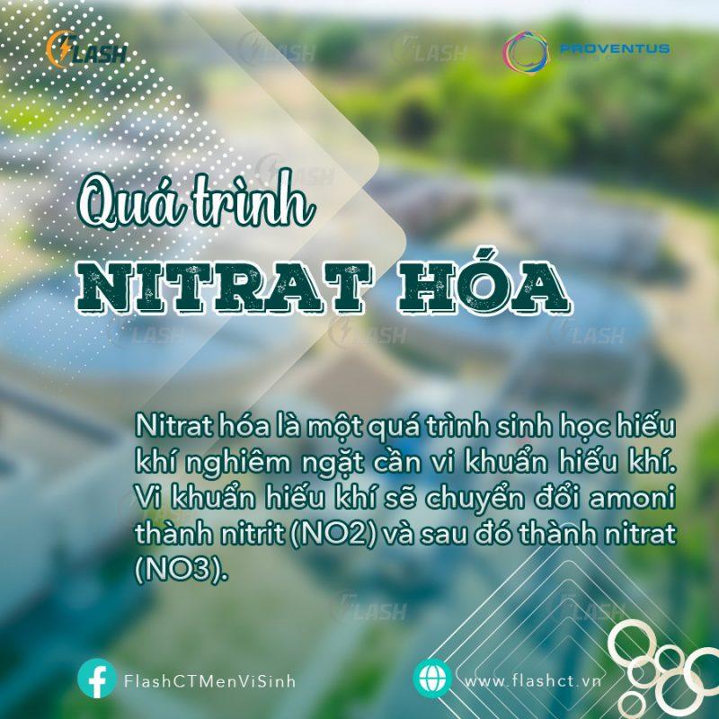 Tổng quan 3 bước xử lý nitơ trong nước thải, quá trình nitrat hóa