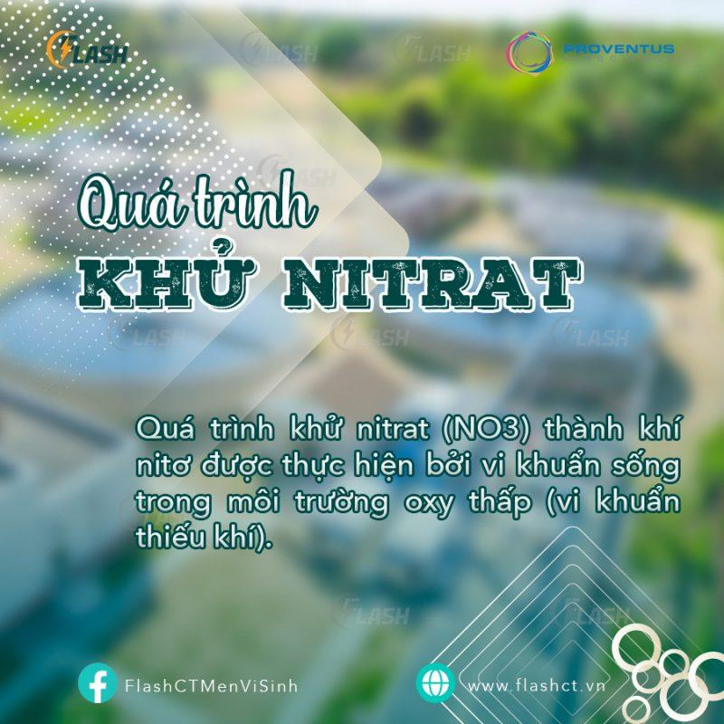 Tổng quan 3 bước xử lý nitơ trong nước thải, quá trình khử nitrat