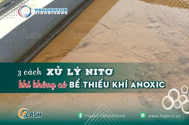 cách xử lý nitơ khi không có bể anoxic