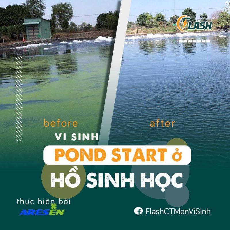 sử dụng vi sinh Pond Start ở hồ sinh học