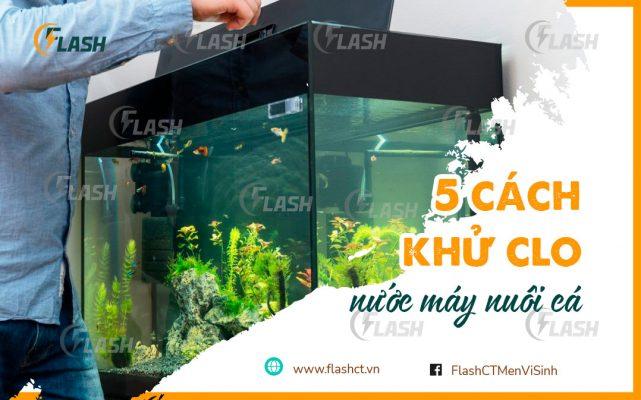 khu-clo-nuoc-may-nuoi-ca