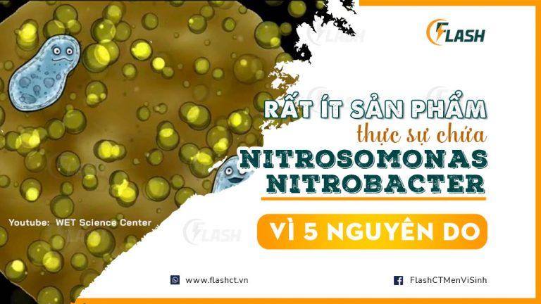 rất ít sản phẩm thực sự chứa vi khuẩn nitrosomonas và nitrobacter