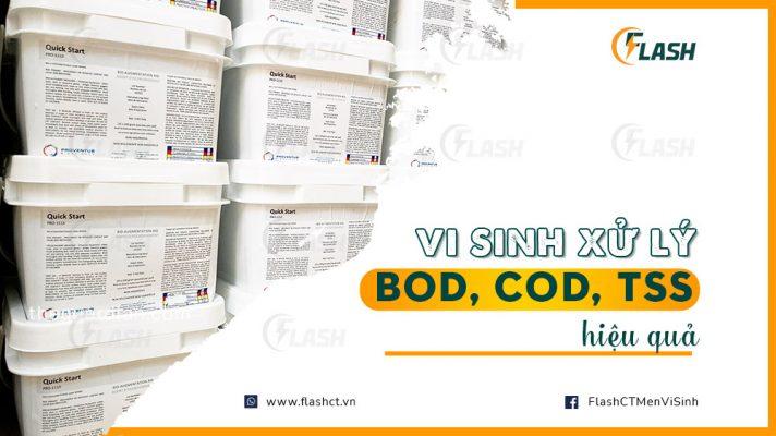 vi sinh xử lý BOD COD TSS hiệu quả